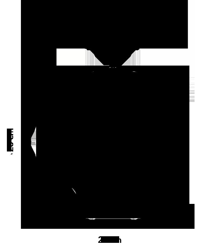 Sacrea Technical Drawing: